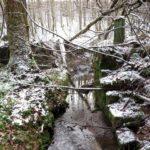 Janovský potok zbytek mostu