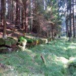 Janovský potok ochranné zdi
